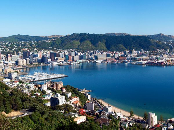 Wellington_Panorama_View